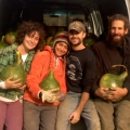 After Birdhouse gourd harvest.