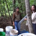 Shua & Nina processing Early Moonbeam Watermelon, using hardware cloth screen, lots of mosquitoes.